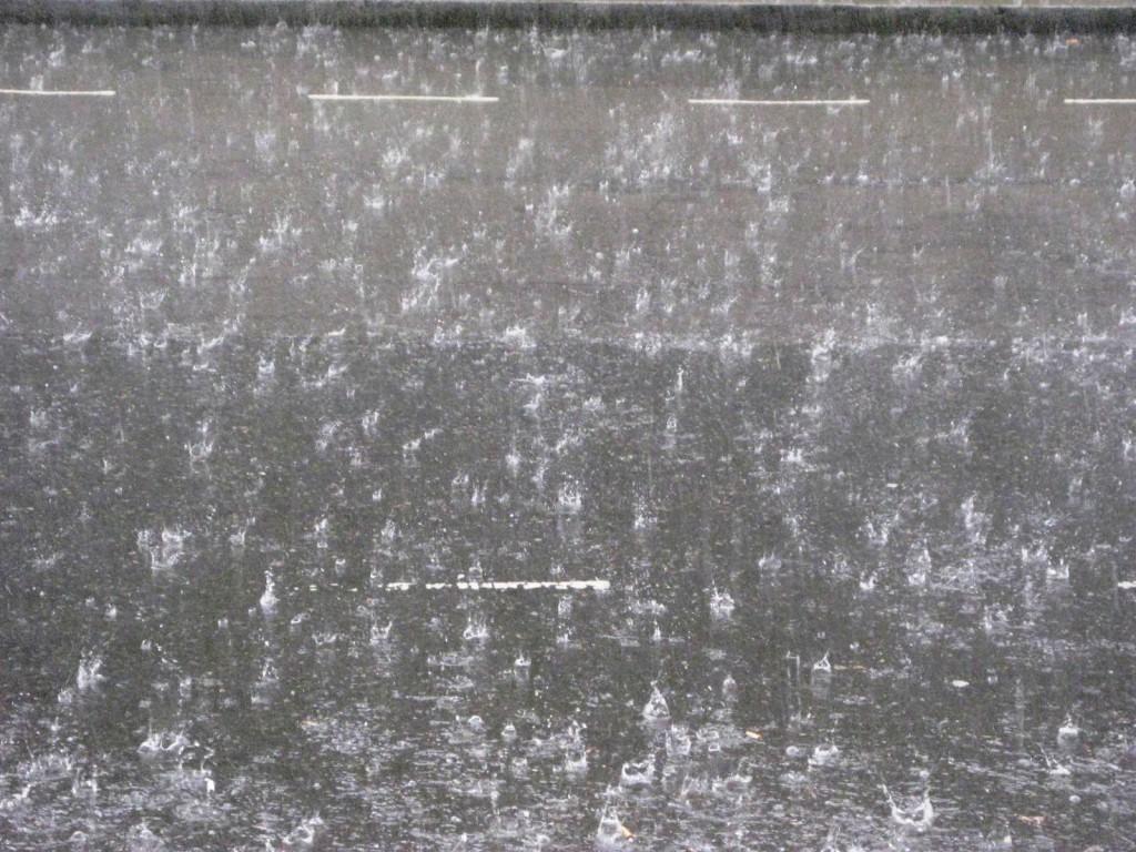 14.09.19 Storm rain (2)
